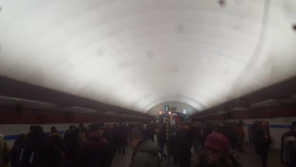 Поезд встал на перегоне между Пионерской и Удельной. Машинист вышел в туннель. До этого что-то сильн...