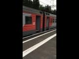 Электричка Торфяное-Санкт-Петербург-Главн.