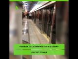 """Станцию метро """"Беговая"""" в Петербурге показали изнутри. Открытие намечено на 27 мая"""