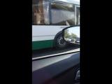 На улице Димитрова перед Будапештской в сторону Купчинской автобус ударил Форда