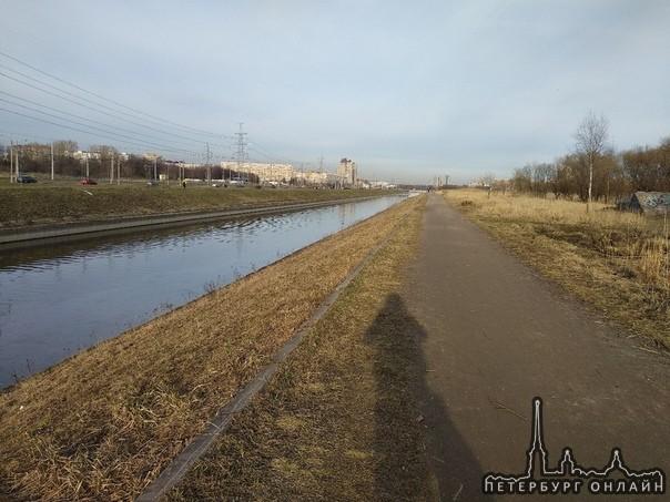 Поджог травы на Петергофском шоссе